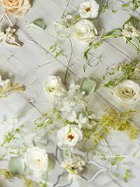 floral-20160516-3
